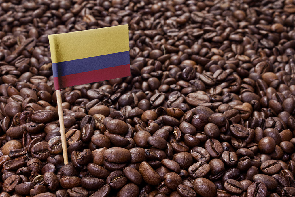 Fairtrade Mediterranean Coffee