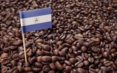 Fairtrade Nicaraguan Medium
