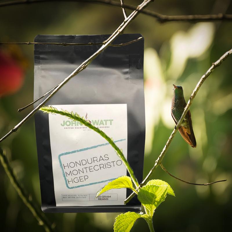 honduras-coffee-monte-cristo-john-watt